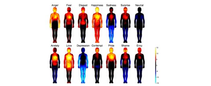 body map.jpg